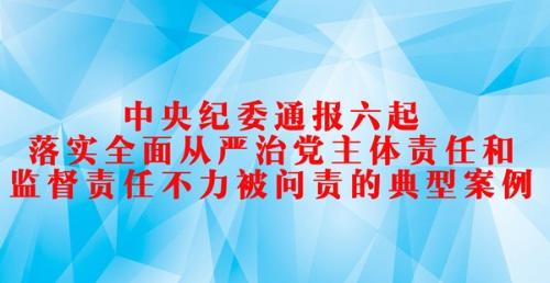 中央纪委通报六起落实全面从严治党主体责任和监督责任不力被问责的典型案例